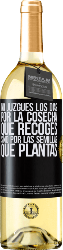 29,95 € Free Shipping | White Wine WHITE Edition Do not judge the days by the harvest you collect, but by the seeds you plant Black Label. Customizable label Young wine Harvest 2020 Verdejo
