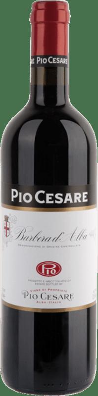 17,95 € Free Shipping   Red wine Pio Cesare D.O.C. Barbera d'Alba Piemonte Italy Barbera Bottle 75 cl