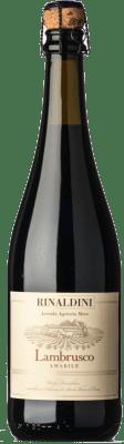 10,95 € Free Shipping   Red sparkling Rinaldini Lambrusco Amabile Frizzante I.G.T. Emilia Romagna Emilia-Romagna Italy Lambrusco Maestri, Lambrusco Salamino, Ancellotta Bottle 75 cl