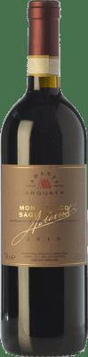 36,95 € Free Shipping | Red wine Adanti D.O.C.G. Sagrantino di Montefalco Umbria Italy Sagrantino Bottle 75 cl
