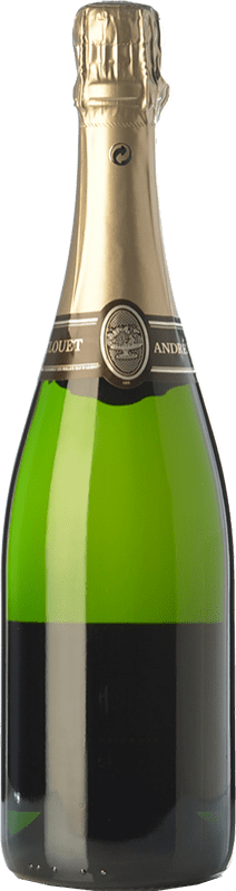 33,95 € Free Shipping | White sparkling André Clouet Silver Brut Nature A.O.C. Champagne Champagne France Pinot Black Bottle 75 cl | Thousands of wine lovers trust us to get the best price guarantee, free shipping always and hassle-free shopping and returns.