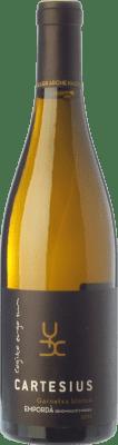 12,95 € Envoi gratuit | Vin blanc Arché Pagés Cartesius Blanc Crianza D.O. Empordà Catalogne Espagne Grenache Blanc Bouteille 75 cl