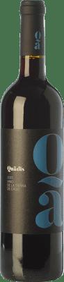 7,95 € Envoi gratuit   Vin rouge Barbadillo Quadis Joven I.G.P. Vino de la Tierra de Cádiz Andalousie Espagne Tempranillo, Merlot, Syrah, Tintilla de Rota Bouteille 75 cl
