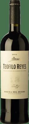 16,95 € Envío gratis | Vino tinto Teófilo Reyes Crianza D.O. Ribera del Duero Castilla y León España Tempranillo Botella 75 cl