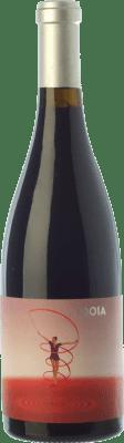 19,95 € Envío gratis | Vino tinto Ca N'Estruc Idoia Negre Crianza D.O. Catalunya Cataluña España Syrah, Garnacha Botella Mágnum 1,5 L