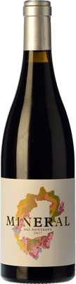 12,95 € Free Shipping | Red wine Cara Nord Mineral del Montsant Joven D.O. Montsant Catalonia Spain Grenache, Carignan Bottle 75 cl