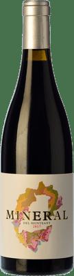 11,95 € Envoi gratuit | Vin rouge Cara Nord Mineral del Montsant Joven D.O. Montsant Catalogne Espagne Grenache, Carignan Bouteille 75 cl