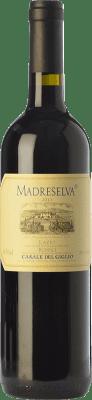17,95 € Free Shipping | Red wine Casale del Giglio Madreselva I.G.T. Lazio Lazio Italy Merlot, Cabernet Sauvignon, Petit Verdot Bottle 75 cl