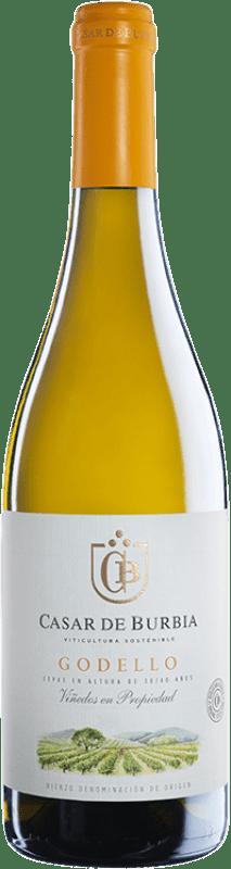 9,95 € Envoi gratuit | Vin blanc Casar de Burbia D.O. Bierzo Castille et Leon Espagne Godello Bouteille 75 cl