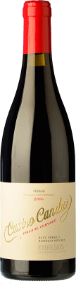 22,95 € Envoi gratuit | Vin rouge Castro Candaz Finca El Curvado Crianza D.O. Ribeira Sacra Galice Espagne Mencía Bouteille 75 cl