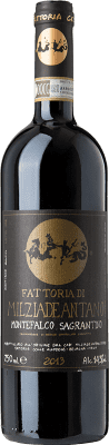 39,95 € Free Shipping | Red wine Colleallodole D.O.C.G. Sagrantino di Montefalco Umbria Italy Sagrantino Bottle 75 cl