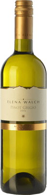 17,95 € Free Shipping | White wine Elena Walch Pinot Grigio D.O.C. Alto Adige Trentino-Alto Adige Italy Pinot Grey Bottle 75 cl