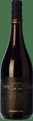 13,95 € Kostenloser Versand | Rotwein Garnachas de España La Garnatxa Fosca Joven D.O.Ca. Priorat Katalonien Spanien Grenache Flasche 75 cl