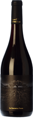 13,95 € Envío gratis | Vino tinto Garnachas de España La Garnatxa Fosca Joven D.O.Ca. Priorat Cataluña España Garnacha Botella 75 cl