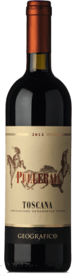 29,95 € Free Shipping | Red wine Geografico Pulleraia I.G.T. Toscana Tuscany Italy Merlot Bottle 75 cl