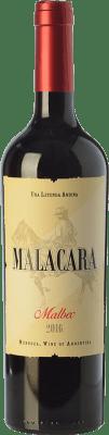 9,95 € Envoi gratuit   Vin rouge Kauzo Malacara Joven I.G. Valle de Uco Uco Valley Argentine Malbec Bouteille 75 cl