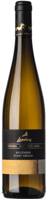12,95 € Free Shipping | White wine Laimburg Pinot Grigio D.O.C. Alto Adige Trentino-Alto Adige Italy Pinot Grey Bottle 75 cl