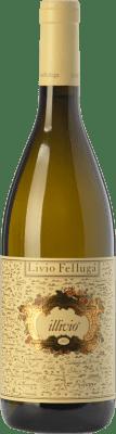 29,95 € Free Shipping | White wine Livio Felluga Illivio D.O.C. Colli Orientali del Friuli Friuli-Venezia Giulia Italy Chardonnay, Pinot White, Picolit Bottle 75 cl