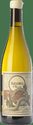 12,95 € Envoi gratuit | Vin blanc Máquina & Tabla Páramos de Nicasia Crianza D.O. Rueda Castille et Leon Espagne Verdejo Bouteille 75 cl