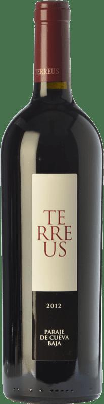 114,95 € Free Shipping | Red wine Mauro Terreus Crianza I.G.P. Vino de la Tierra de Castilla y León Castilla y León Spain Tempranillo Bottle 75 cl