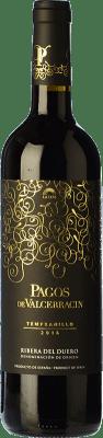5,95 € Envío gratis | Vino tinto Pagos de Valcerracín Joven D.O. Ribera del Duero Castilla y León España Tempranillo Botella 75 cl