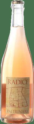 14,95 € Free Shipping | Red wine Paltrinieri Lambrusco Radice D.O.C. Modena Emilia-Romagna Italy Lambrusco di Sorbara Bottle 75 cl