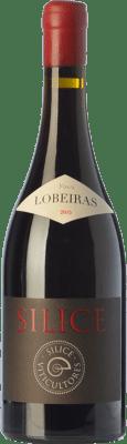 96,95 € Envío gratis | Vino tinto Sílice Finca Lobeiras Crianza España Mencía, Brancellao, Merenzao Botella 75 cl