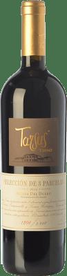 38,95 € Kostenloser Versand | Rotwein Tarsus Terno Crianza D.O. Ribera del Duero Kastilien und León Spanien Tempranillo Flasche 75 cl