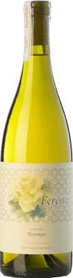 31,95 € Free Shipping | White wine Tayaimgut Feréstec Crianza D.O. Penedès Catalonia Spain Sauvignon White Bottle 75 cl