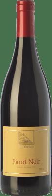 21,95 € Free Shipping | Red wine Terlano Pinot Nero D.O.C. Alto Adige Trentino-Alto Adige Italy Pinot Black Bottle 75 cl