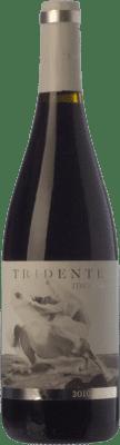 8,95 € Envío gratis | Vino tinto Tritón Tridente Joven I.G.P. Vino de la Tierra de Castilla y León Castilla y León España Mencía Botella 75 cl