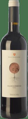 8,95 € Free Shipping | Red wine Valderiz Valdehermoso 9 Meses Joven D.O. Ribera del Duero Castilla y León Spain Tempranillo Bottle 75 cl