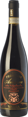 45,95 € Free Shipping | Red wine Vaona Pegrandi D.O.C.G. Amarone della Valpolicella Veneto Italy Corvina, Rondinella, Molinara Bottle 75 cl