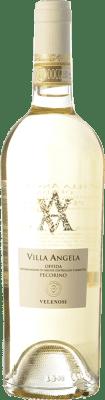 15,95 € Free Shipping   White wine Velenosi Villa Angela D.O.C. Offida Marche Italy Pecorino Bottle 75 cl
