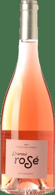 7,95 € Envoi gratuit | Vin rose Vinyes d'en Gabriel L'Heravi Rosé D.O. Montsant Catalogne Espagne Syrah, Grenache Bouteille 75 cl
