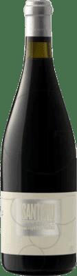 46,95 € Free Shipping | Red wine Portal del Montsant Santbru D.O. Montsant Catalonia Spain Syrah, Grenache, Mazuelo, Carignan Bottle 75 cl