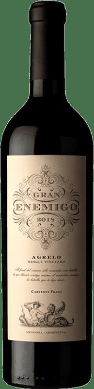 119,95 € Envío gratis | Vino tinto Aleanna Gran Enemigo Agrelo Argentina Cabernet Franc, Malbec Botella 75 cl
