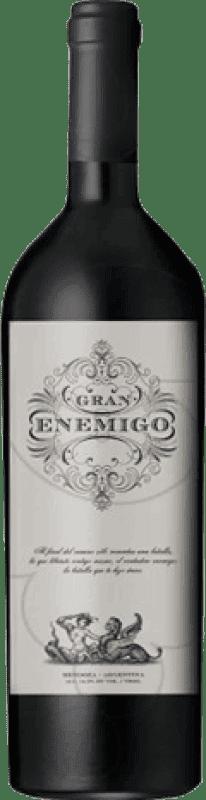 119,95 € Envío gratis | Vino tinto Aleanna Gran Enemigo El Cepillo Argentina Cabernet Franc, Malbec Botella 75 cl