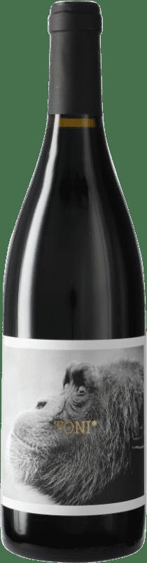 7,95 € Free Shipping | Red wine La Vinyeta Els Monos Toni Negre D.O. Empordà Catalonia Spain Bottle 75 cl