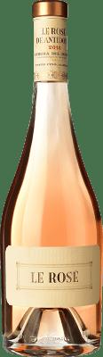 49,95 € Envío gratis | Vino rosado Hernando & Sourdais Le Rosé de Antídoto D.O. Ribera del Duero Castilla y León España Tempranillo, Garnacha, Albillo Botella 75 cl